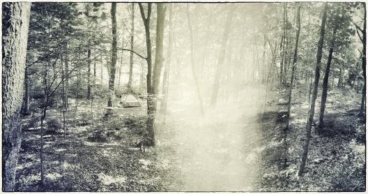 IMG_0476_Snapseed
