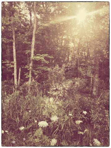 IMG_8372 (1)_Snapseed