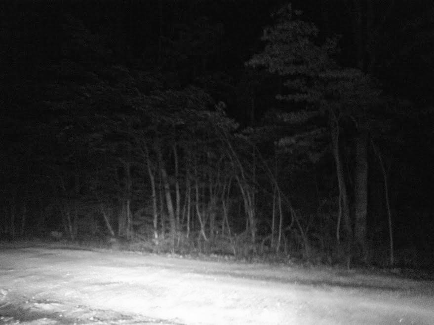 Dark dirt road #thriftycampers
